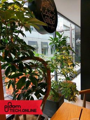 RETHINK CAFE GINZA 風景その2