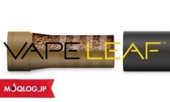 アメリカでも販売されてました!JTのプルームテック海外版を発見!その名も「VAPELEAF(ベイプリーフ)」