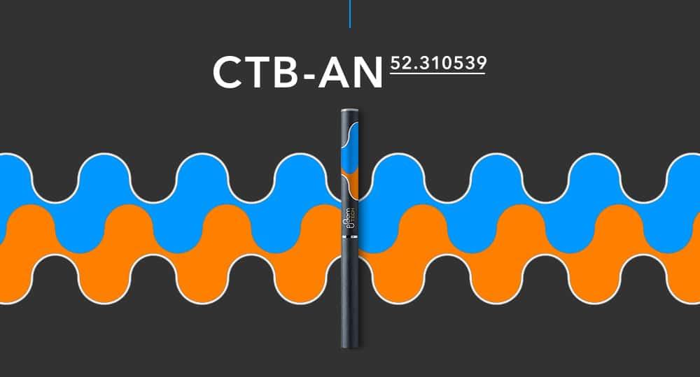 CTB-ANモデル