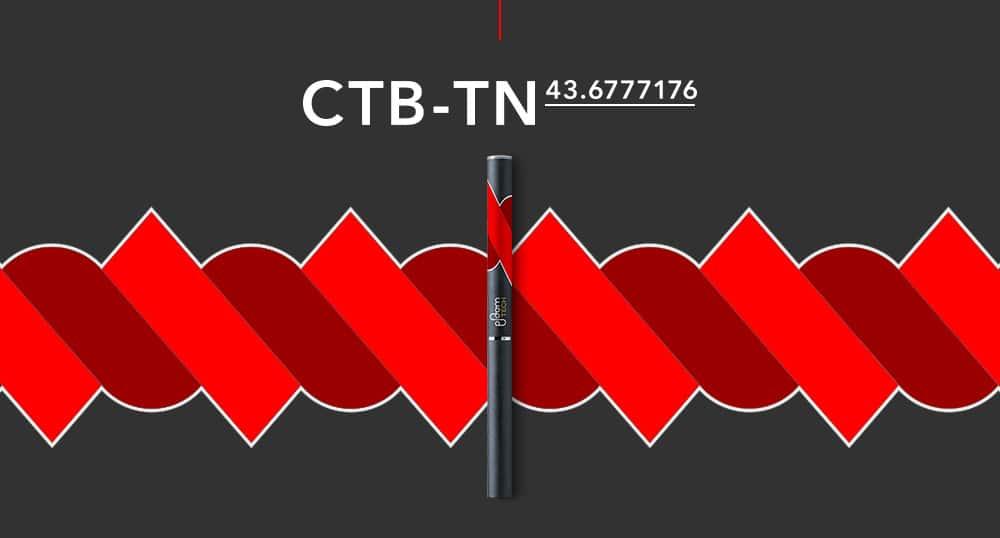 CTB-TNモデル