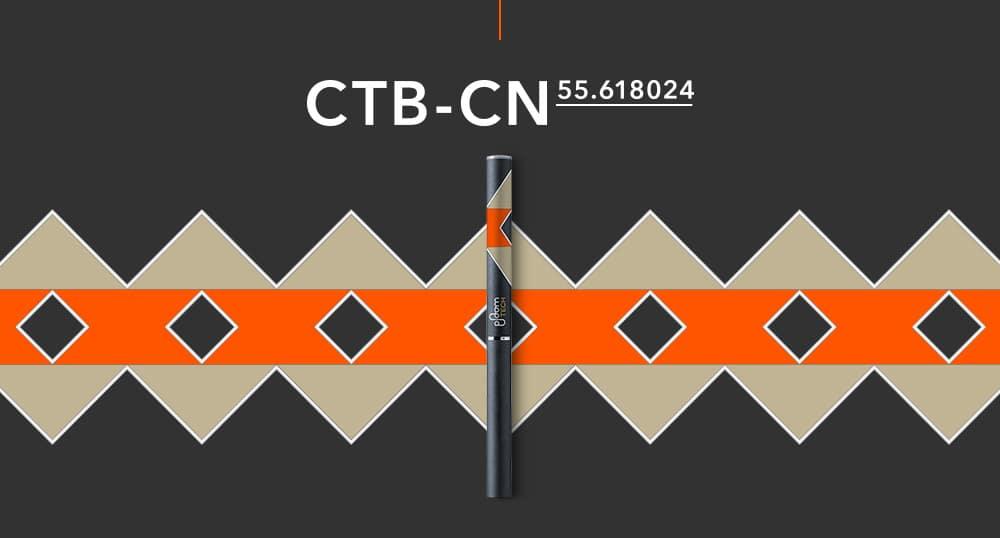 CTB-CNモデル