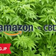 AmazonでCBDと検索したら表示された「ヘンプシードオイル」・・・これはCBDオイルなのか?